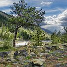 Kootenai River Drainage by rocamiadesign