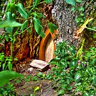 Entrance to Fairyland by ECH52