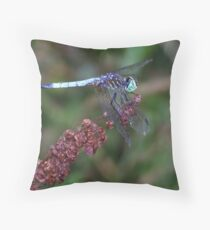 Tattered Wings. Throw Pillow