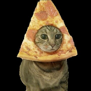 Cat with Pizza Head by bellamendiola