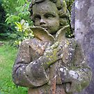 Statue with lichens. by Philip Mitchell