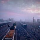 Cootamundra morning ... by Rosalie Dale