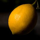 Lemon. by trevorb
