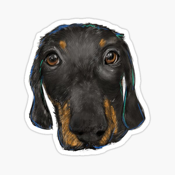 Finny Sticker