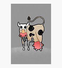 Zombie Cow Photographic Print