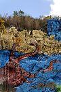 The mural of prehistory, Vinales Valley, Cuba by David Carton