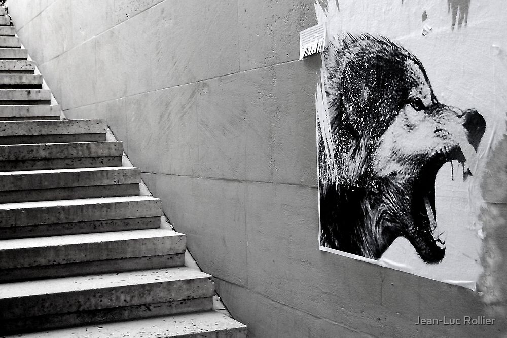 Paris - The wild stairs. by Jean-Luc Rollier