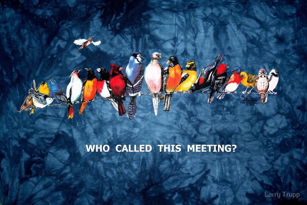 WHO CALLED THIS MEETING? by Larry Trupp