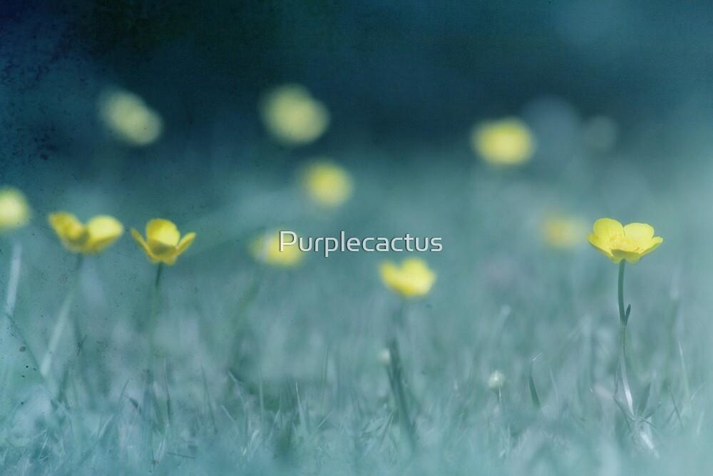 Buttercups by Purplecactus