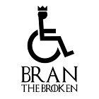Bran The Broken von s2ray