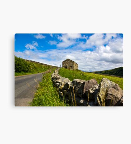 Along The Rural Road Canvas Print