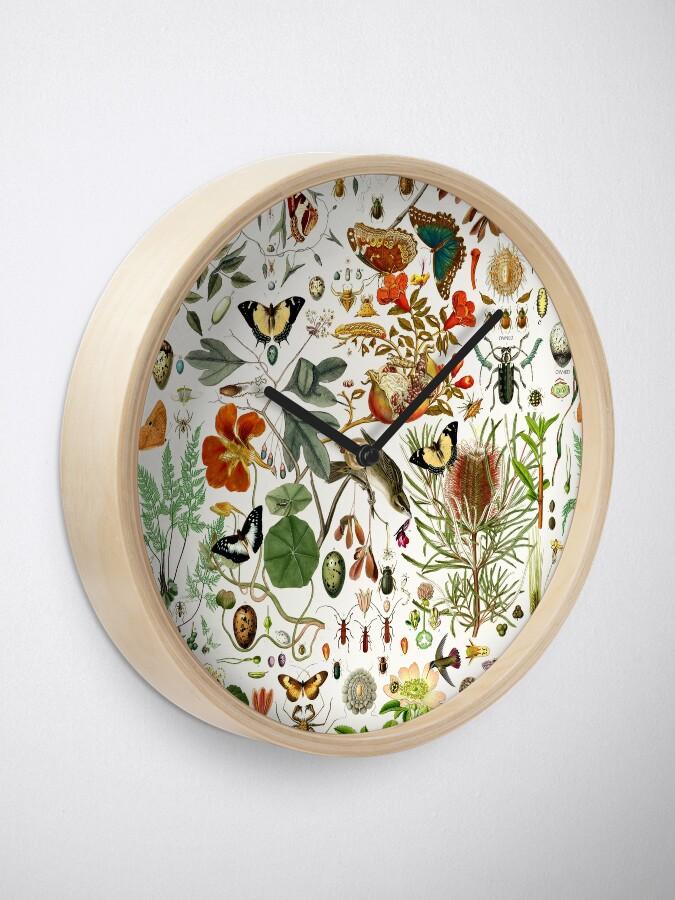 Alternate view of Biology 101 Clock