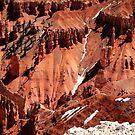 Cedar Breaks National Monument, Utah by Gili Orr