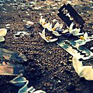 cutting. - more flowers, more razorblades by afure