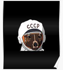 Der erste Hund im Weltraum Laika Poster