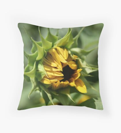 Shy Opening Throw Pillow