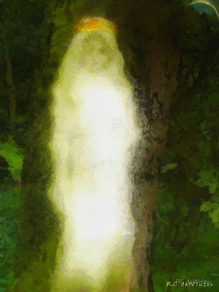 The Spirit of the Wood by RC deWinter