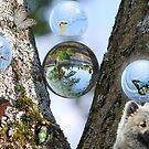 Fantasy Magical Mystical Nature by ellendean