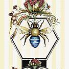 Blau gebänderte Biene von Jenny Wood