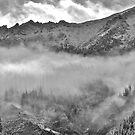 Last Snow by bberwyn