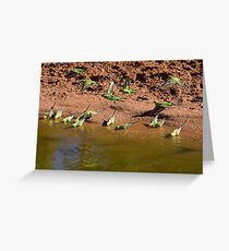 Time for a drink. Greeting Card
