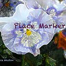 Place Marker for Hosting Purposes Only by RebeccaWeston