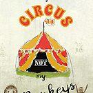 Nicht mein Zirkus, nicht mein Affenzitat von Clare Walker