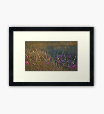 Awakening spring Framed Print