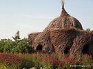 Human Bird Nest surrounded by Raspberry Wine Flowers by Barberelli