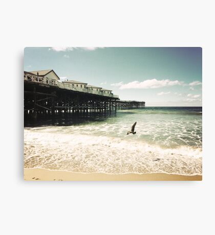 Seagull and the Pier Canvas Print