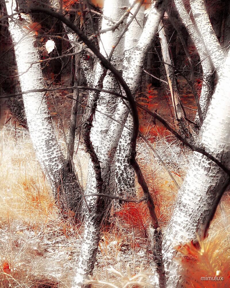 Zauberwald - Opfergaben / Magic Forest Ritual Offerings by mimulux