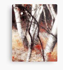 Zauberwald - Opfergaben / Magic Forest Ritual Offerings Metal Print