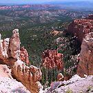 Bryce Canyon, Utah, Rainbow Point #1 by Gili Orr