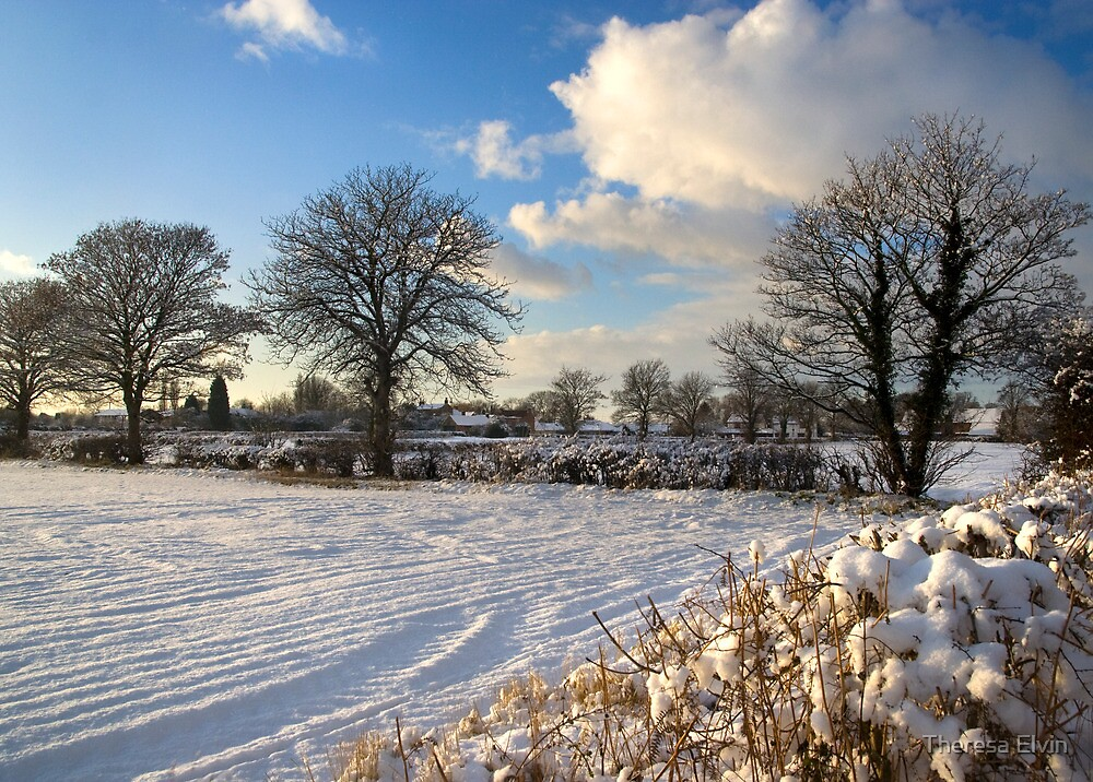 Sparkling snow scene by Theresa Elvin