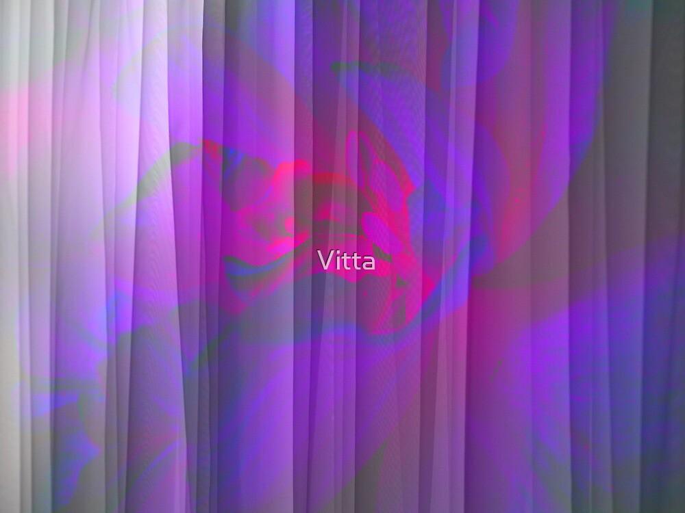 Tulip Dreams. by Vitta