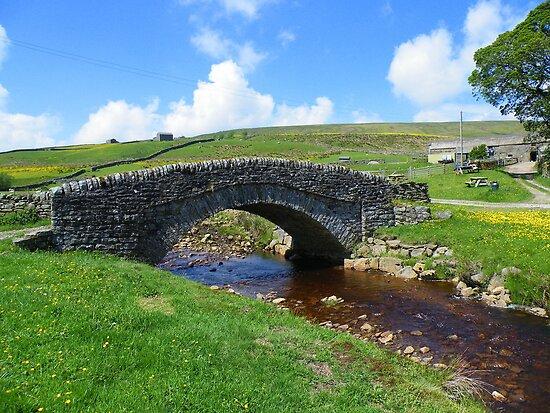 The Yorkshire Dales: The Bridge at Ravenseat Farm by Robert Parsons