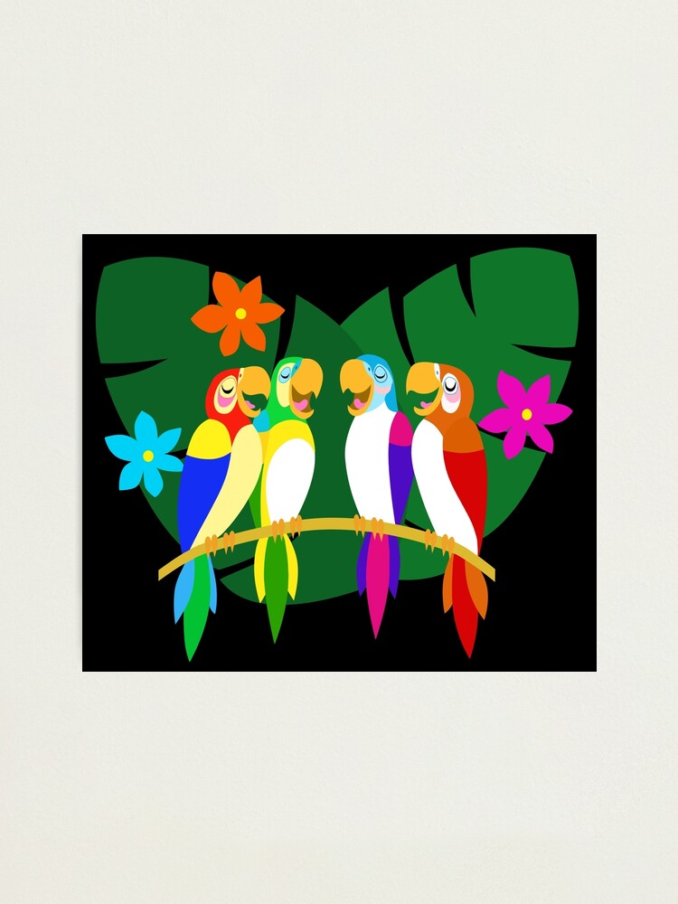 Alternate view of Tropical Singing Feathered Friends   Photographic Print
