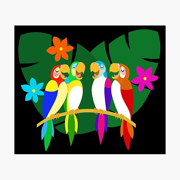 Tropical Singing Feathered Friends   Photographic Print