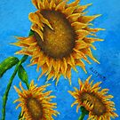TUSCAN SUNFLOWERS by Allegretto
