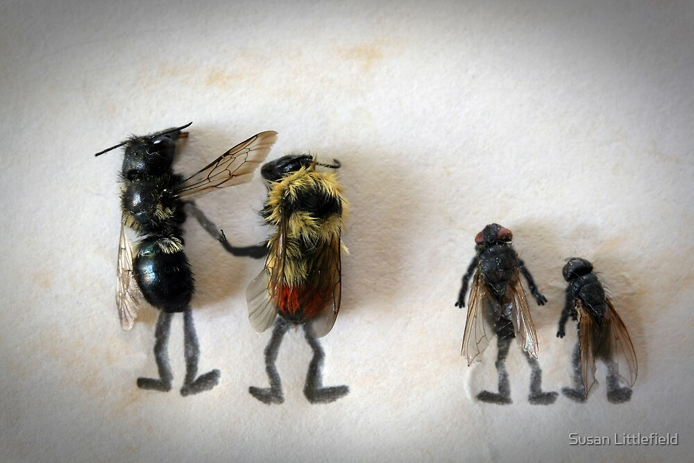 To bee or not to bee by Susan Littlefield
