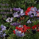 Pretty Poppy - Thank You Card by judygal