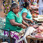 Sri Lanka. Negombo. Fish Market.  by vadim19