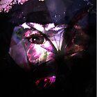 look deeper within by Natalie Adlard