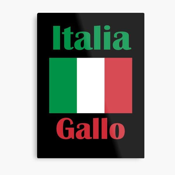 Gallo Italy Metal Print