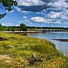 NH Landscape Seacoast 2 by Edward Myers