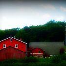 The Orton Farm by Debbie Robbins