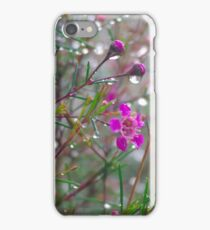 Geraldton Waxflower iPhone Case/Skin