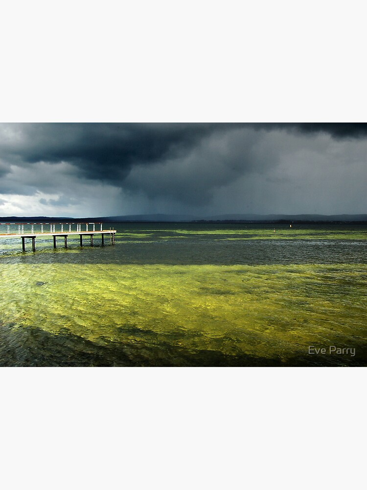 Storm  by AdamsWife
