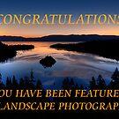 Banner Entry for Landscape Group by Justin Baer