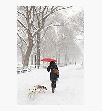 Winter Walk Photographic Print